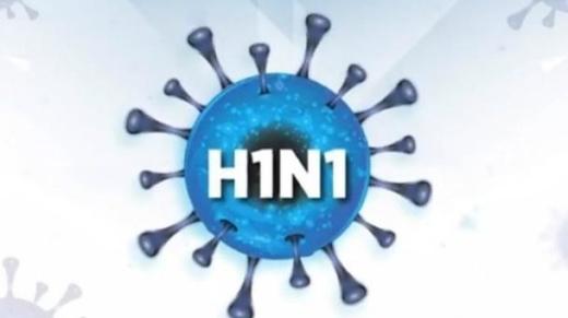 vacina da gripe suína